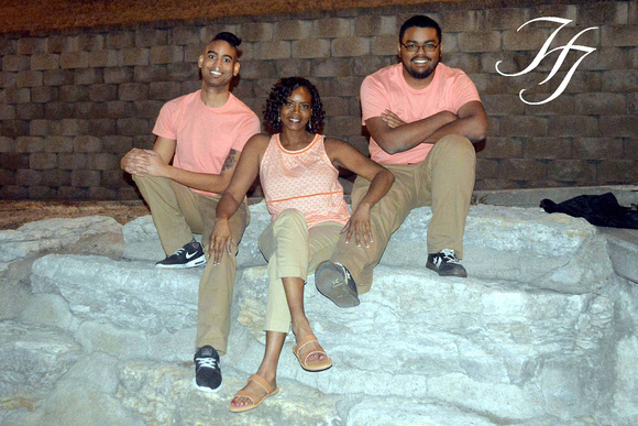 Partridge Family (22) copy2 WM